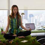 Mindfulness în Compania Ta