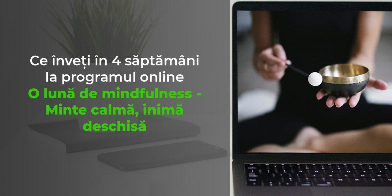 Ce înveți concret în O lună de mindfulness?
