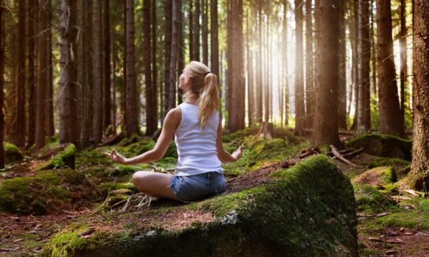 Tu cu tine, în liniște. Sau a merge într-un retreat de meditație și mindfulness.